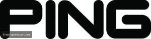 Ping Logo large
